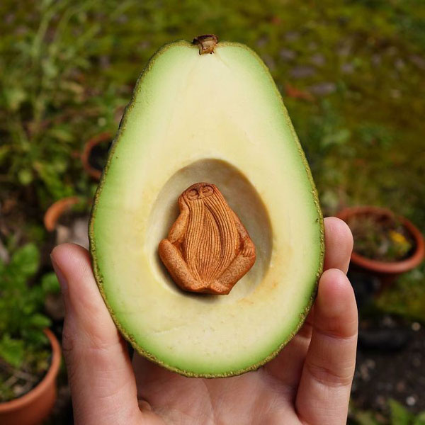 avocado stone faces carved by jan campbell 1 Waste Not, Want Not: Artist Carves Avocado Pits Into Tiny Forest Spirits