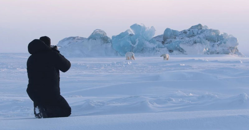 Ghosts of the Arctic