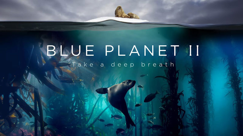 Blue Planet II is Coming and It Looks Unreal