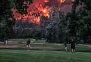 Photo of Golfers Playing in Front of Oregon Wildfires Goes Viral