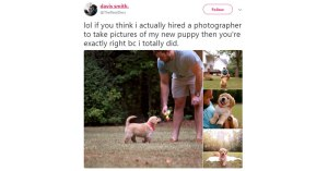 guy hires puppy photog guy hires puppy photog