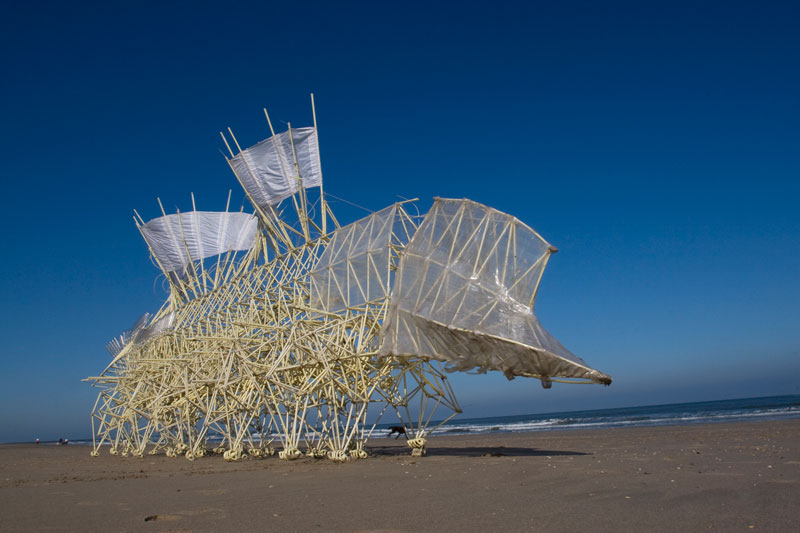 kinetic beach walkers powered by the wind by theo jansen 9 Strandbeests: The Kinetic Beach Walkers Powered by the Wind