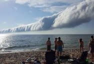If You Get the Chance to See a Morning Glory Cloud, Do It