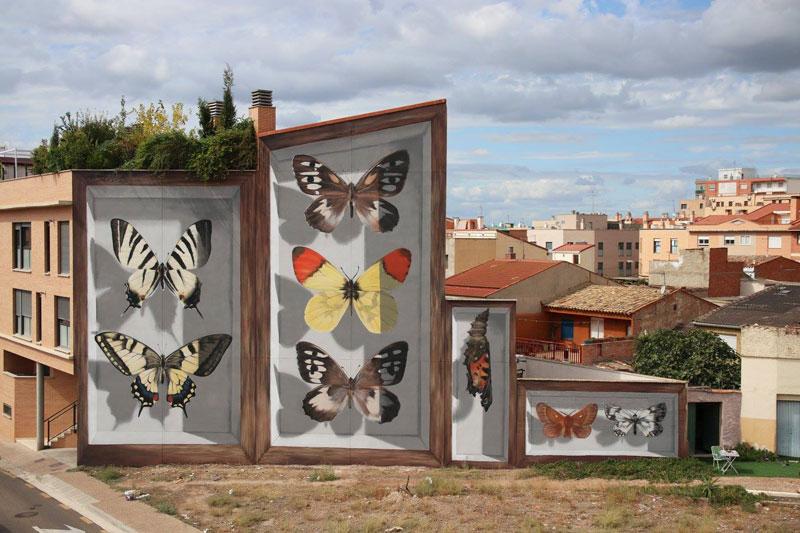 Artist Transforms Walls Into Giant 3D Specimen Boxes for Butterflies