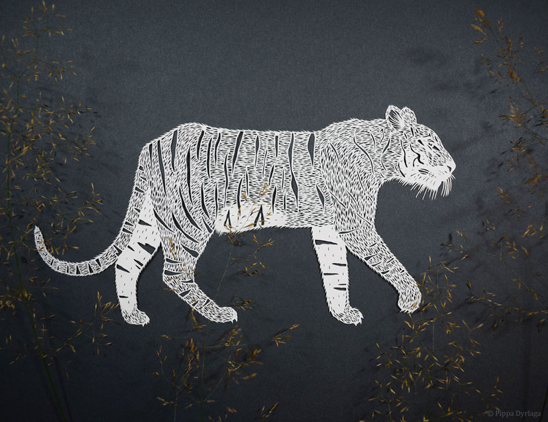 amazing hand cut paper animals by pippa dyrlaga 6 Amazing Hand Cut Paper Animals by Pippa Dyrlaga