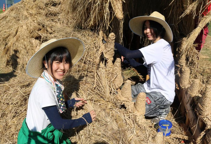 giant straw animals japan wara art festival 2017 9 Every Year Japanese Art Students Get Together and Make Giant Animals Out of Straw