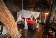 The Tree House at this Victoria Falls Safari Lodge Looks Beautiful