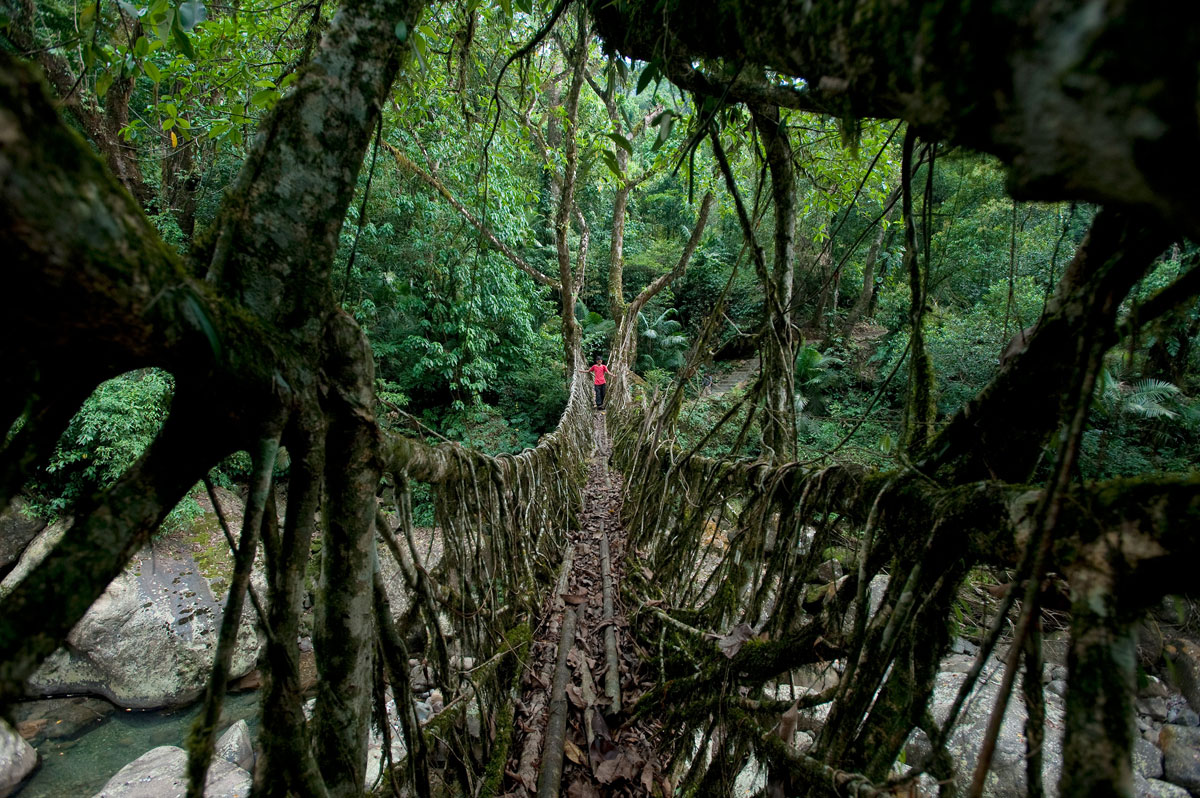 007  A National Geographic Tour of Interesting Bridges Around the World (8 Photos)