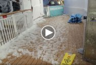 Norwegian Cruise Ship Gets Caught in Bomb Cyclone and Passenger Faithfully Documents the Havoc