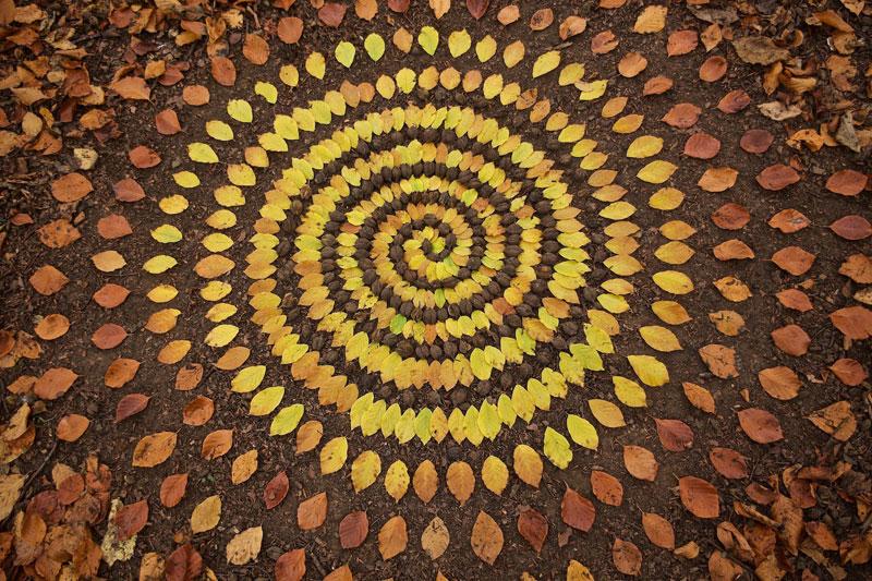 james blunt arranges natural objects into ephemeral patterns and designs 11 Artist Arranges Natural Objects Into Ephemeral Patterns and Designs