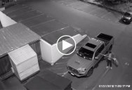 Radio Station Gets Their Sports Guy To Do a Play-By-Play of a Vandal in Their Parking Lot
