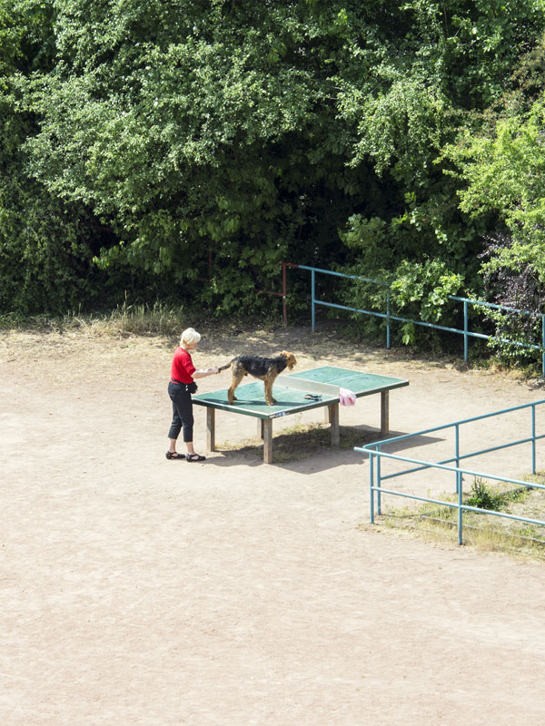 daily life of outdoor ping pong table by tomiyasu hayahisa 5 The Life and Times of an Outdoor Ping Pong Table (8 pics)