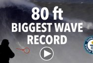 This is the Official World Record for the Biggest Wave Ever Surfed