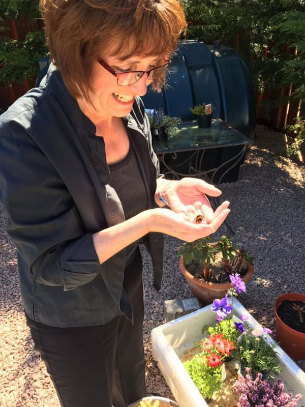 woman rescues wingless queen bee builds her a tiny garden to live out final days 1 Woman Rescues Wingless Queen Bee; Builds Her a Tiny Garden to Live Out Final Days