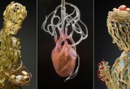 Some of the Most Intricate and Beautiful Glass Sculptures You Will See