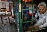 Inside Hong Kong's Shocking Cage Homes