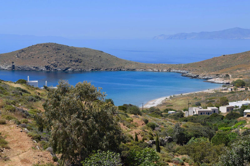 job post goes viral as cat sanctuary on greek island seeks caretaker 3 Job Post Goes Viral As Cat Sanctuary on Greek Island Seeks Caretaker