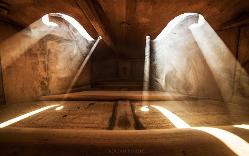 photos inside a cello 3 Amazing Photos from the Inside of a Cello