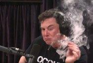 The Complete 2.5 Hour Elon Musk and Joe Rogan Interview