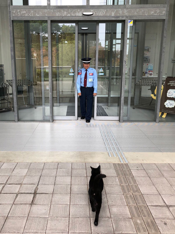 museum cats japan 10 Two Cats Have Been Trolling Museum Security for Over 2 Years Now
