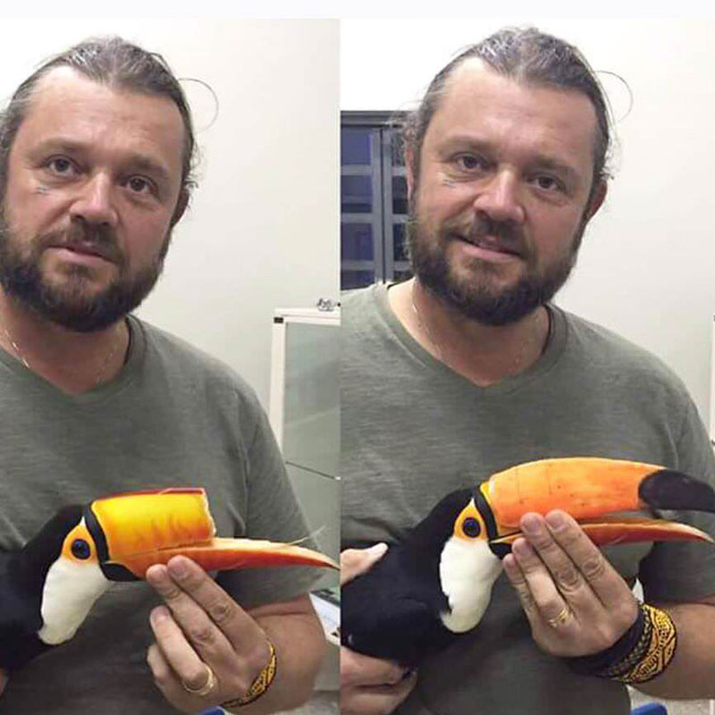 vet 3d prints new beak for injured toucan 3 Vet 3D Prints New Beak for Injured Toucan
