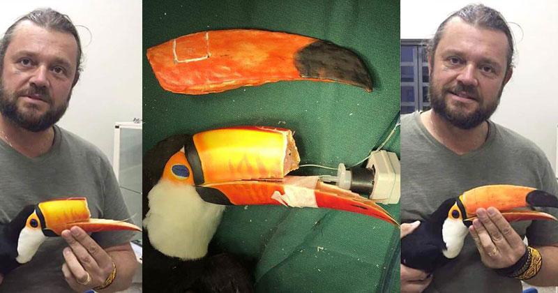 Vet 3D Prints New Beak for Injured Toucan