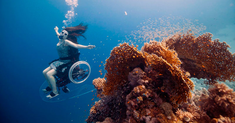 A Spellbinding Ocean Exploration With an Underwater Wheelchair