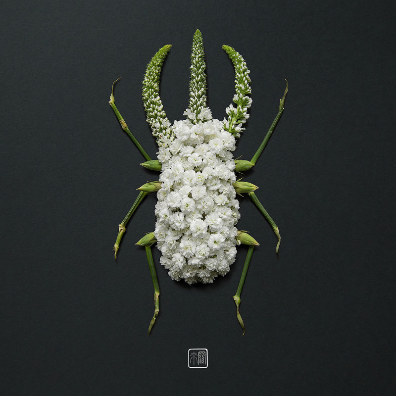 animal portraits made from flowers raku inoue 3 When Kingdoms Collide: Animal Portraits Made from Floral Arrangements