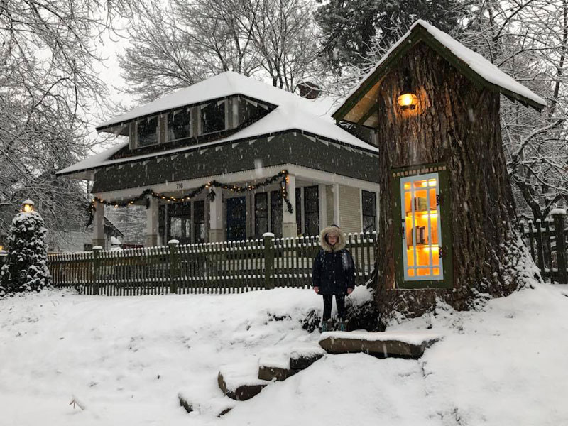 book tree library in old trunk sharalee armitage 1 Woman Forced to Remove Dying Tree, Turns It Into Tiny Library Instead