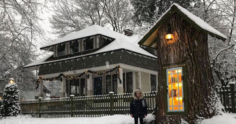 Woman Forced to Remove Dying Tree, Turns It Into Tiny Library Instead
