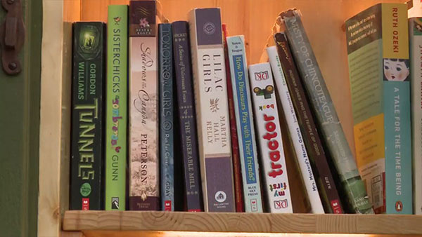 book tree library in old trunk sharalee armitage 7 Woman Forced to Remove Dying Tree, Turns It Into Tiny Library Instead