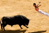 F*ck Bullfighting, Non-Violent Bull-Leaping is Better in Every Regard