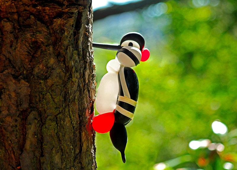 balloon birds by terry cook 7 Balloon Birds Caught in Their Natural Habitat
