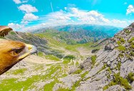 Flying Through the Alps From an Eagle's Point of View