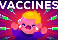 The Side Effects of Vaccines – How High is the Risk?