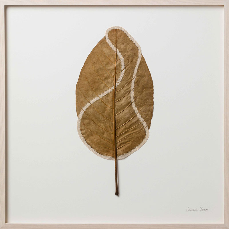 crochet leaves by susanna bauer 16 Artist Crochets New Life Into Fallen Leaves