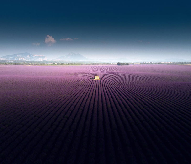 aerial done views of lavender field in valensole france by samir belhamra 3 These Aerial Views of a Lavender Field in Valensole, France are Incredible