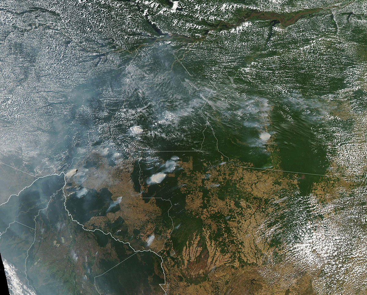 amazon rainforest fires august 2019 nasa aerial from above The Amazon is Burning