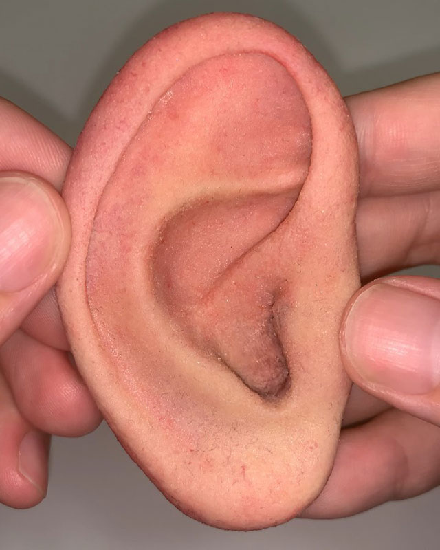 everyday objects that look like body parts by doooo 10 Everyday Objects That Look Like Body Parts is the Weirdest Thing