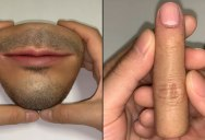 Everyday Objects That Look Like Body Parts is the Weirdest Thing