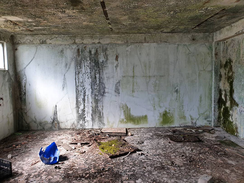 street artist vile fools viewers into believing he cut actual walls out 9 Surreal Street Artworks That Looks Like the Walls Were Chiselled Out