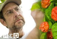 Meet the Farmer Behind the Carolina Reaper, the Hottest Pepper in the World