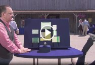War Vet on Antiques Roadshow Collapses After Learning Value of his $345 Rolex