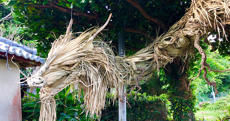 This Awesome Dragon Made From Palm Tree Leaves (5 Photos)
