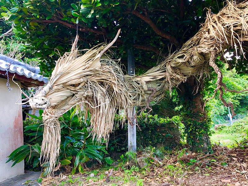 dragon made from palm tree leaves japan by ayako 4 This Awesome Dragon Made From Palm Tree Leaves (5 Photos)