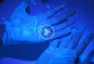 How Soap Kills the Coronavirus in 20 Seconds