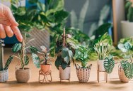 These Miniature Potted Plants Made from Paper are Just Adorable