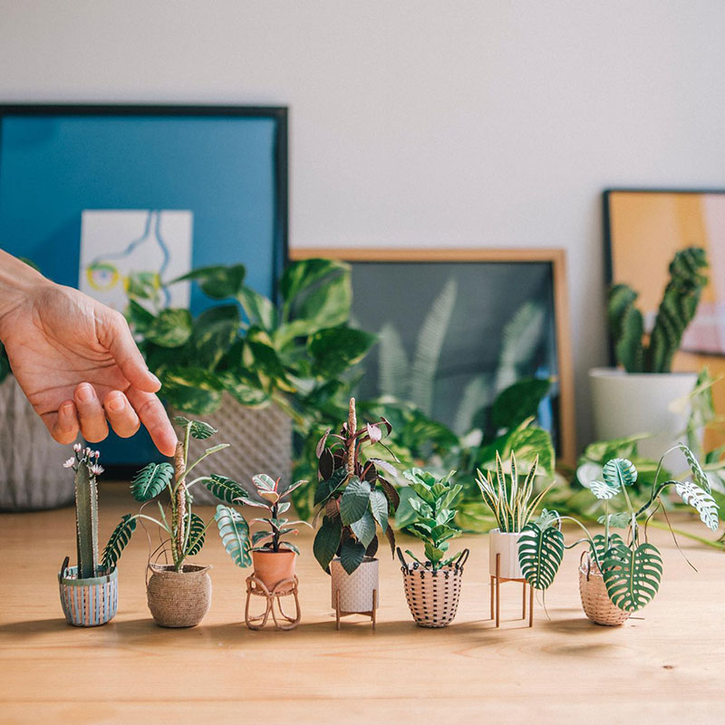 miniature paper potted plants by raya sader bujana 9 These Miniature Potted Plants Made from Paper are Just Adorable