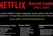 Netflix Has a Huge Selection of Hidden Categories, Here's How You Browse Them