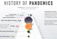 A Visual Timeline of Pandemics Throughout History [Infographic]